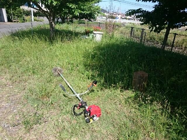 アドプト公園の草刈り